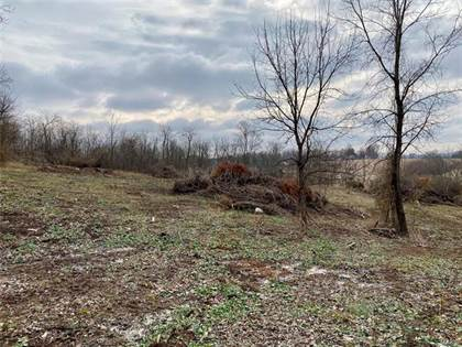 Lots And Land for sale in 0 Tract 2 Buford Boulevard, Fredericktown, MO, 63645