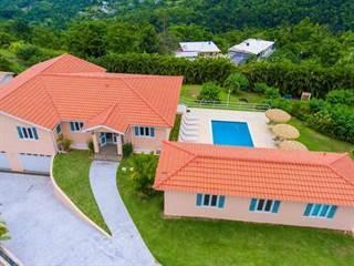 Single Family for sale in km 8.2 CARR 956, CALLE CAMINO CARMEN RIVERA, Guzman Abajo, PR, 00745