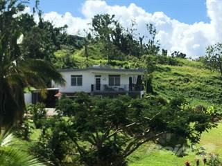 Residential Property for sale in SR #907, Km 2.4 (interior), Las Yayas Sector, PR 0777, Canovanas, PR, 00729