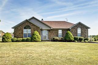 Single Family for sale in 157 Valleyview Dr, Fisherville, KY, 40023