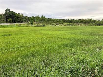 Lots And Land for sale in 0 Route 22, West Chazy, NY, 12992