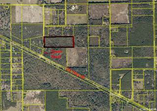 Farm And Agriculture for sale in 4434 W Tower Road, Live Oak, FL, 32060