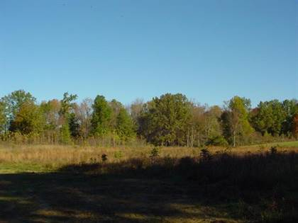 Lots And Land for sale in Lot Hundred Acre Pond Rd, Hardyville, KY, 42746