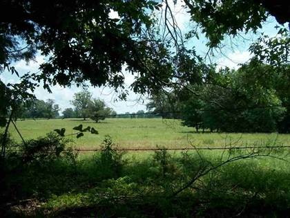 Lots And Land for sale in TBD CR 3309, Omaha, TX, 75571