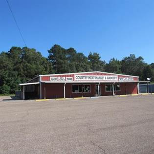 Commercial for sale in 56 Hwy 587, Foxworth, MS, 39429