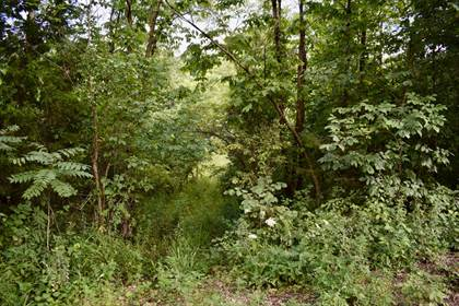 Lots And Land for sale in 2632 Carter H-327, Ellsinore, MO, 63937