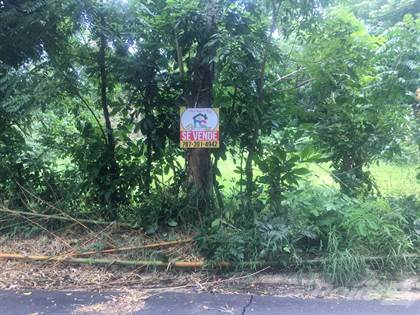 Lots And Land for sale in Carr 411 int  - Lot, Aguada, PR, 00602