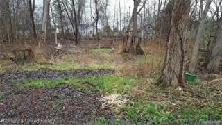 Land for sale in 0 RUSHVIEW Drive, Hamburg, MI, 48169