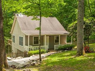 Residential Property for sale in 47 W Woodland Trail, Greater Edneyville, NC, 28792