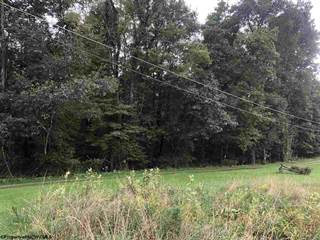 Land for sale in TBD Parcel 5 Lemon Street, Masontown, WV, 26542