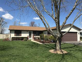 Single Family for sale in 202 Mitchell Court, Braidwood, IL, 60408