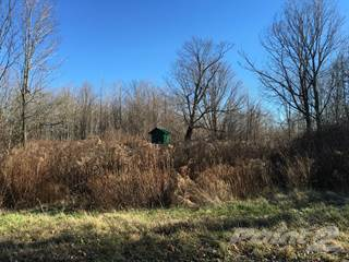Land for sale in 100& 156 stammer road, Greater Gouverneur, NY, 13642