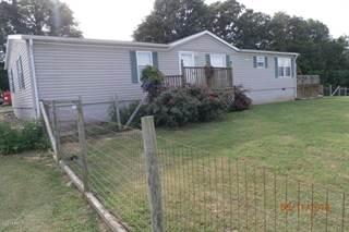 Single Family for sale in 0000 Lick Creek Road, Buncombe, IL, 62912