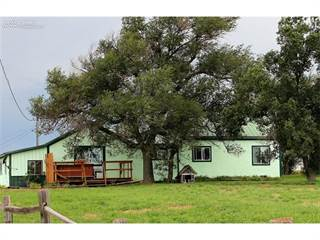Single Family for sale in 14360 Holtwood Road, Simla, CO, 80835