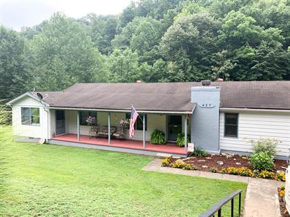 Residential Property for sale in 627 Little Paint Creek, East Point, KY, 41216
