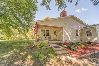 Single Family for sale in 8222 Detour Road, Bunker Hill, IL, 62014