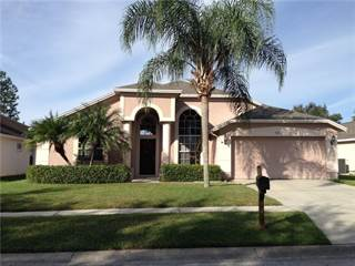 Single Family for sale in 18012 PALM BREEZE DRIVE, Tampa, FL, 33647