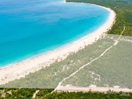 Lots And Land for sale in Beachfront Land in Miches for Hotel / Resort Development, El Seibo