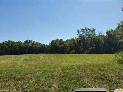 Lots And Land for sale in 39701 PRICE Road, Belleville, MI, 48111
