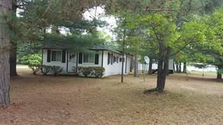 Single Family for sale in 377 Mio Drive, Mio, MI, 48647