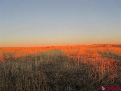 Lots And Land for sale in TBD Road DD. 4, Pleasant View, CO, 81331