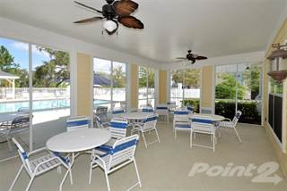 Apartment for rent in Savannah Cove, Tarpon Springs, FL, 34689
