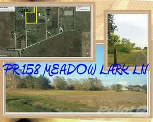 Land for sale in 158 MEADOW LARK LN Bay City, TX 77414, Bay City, TX, 77414