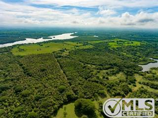Farm And Agriculture for sale in Chiriqui, San Lorenzo, Horconcitos, San Lorenzo, Chiriquí