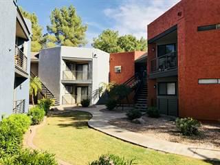 Apartment for rent in Tierra Del Sol, Mesa, AZ, 85210