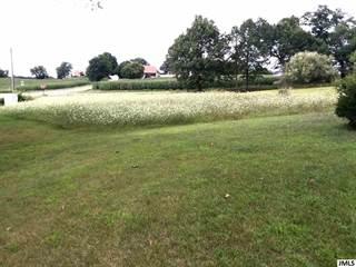 Land for sale in 3305 E LIBERTY RD, Clarklake, MI, 49234