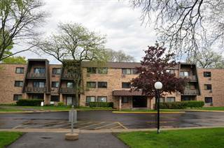 Condo for sale in 2604 North Windsor Drive 203, Arlington Heights, IL, 60004