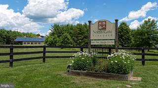 Farm And Agriculture for sale in 16110 MOUNTAIN RIDGE LANE, Purcellville, VA, 20132