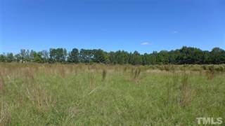 Land for sale in 1735 Old Fairground Road, Willow Spring, NC, 27592