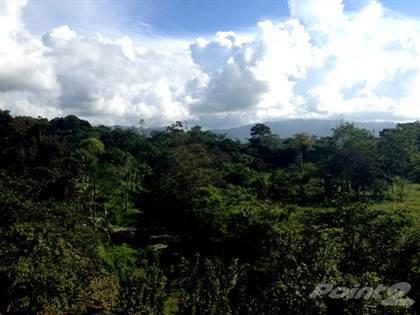 Farm And Agriculture for sale in 198 ACRE FARM IN PARAISO TALAMANCA, LIMON COSTA RICA, Puerto Viejo, Limón
