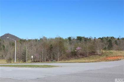 Lots And Land for sale in N/A McLean Drive SE, Leslie, GA, 31764