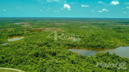 Lots And Land for sale in Lush Tropical 30-Acre Jungle Paradise with Ponds, Belize District, Belize