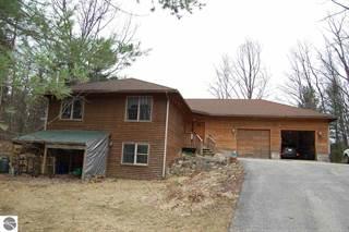 Single Family for sale in 7300 US-131, Fife Lake, MI, 49633