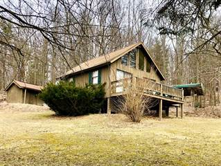 Residential Property for sale in 355 Hammond Lane, Greater Wellsboro, PA, 16946