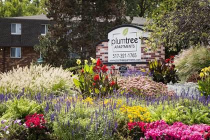Apartment for rent in Plumtree Apartments, Lansing, MI, 48917