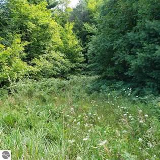 Lots And Land for sale in Lot A Samara Trail, Lake Ann, MI, 49650