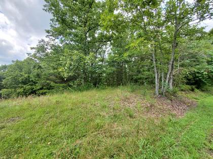 Lots And Land for sale in 0000 Fullers Ridge Rd, Louisa, KY, 41230