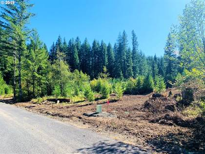 Lots And Land for sale in 181 EDGEWATER DR, Carson, WA, 98610
