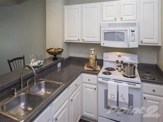 Apartment for rent in The Woods at Polaris Parkway - 2 Bedroom, 2 Bath 939 sq. ft., Westerville City, OH, 43082