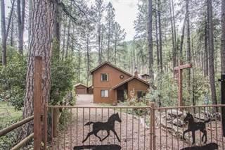 Single Family for sale in 193 E SADDLE MOUNTAIN Road, Payson, AZ, 85541
