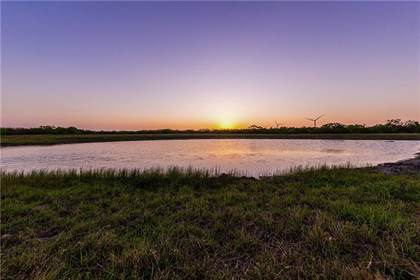 Farm And Agriculture for sale in 55-6 County Road 55, Bishop, TX, 78343