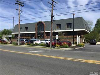 Comm Ind For Rent In 1 John St Smithtown NY 11787