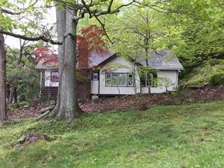 Single Family for sale in 2567   Carmel Avenue, Brewster, NY, 10509