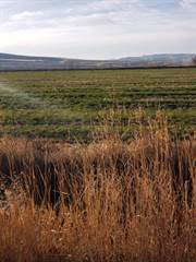 Farm And Agriculture for sale in 1000 N Monroe Road, Shelley, ID, 83274