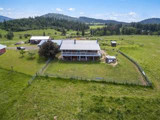 Farm And Agriculture for sale in 8704 E Dancing Wind Lane, Saint Maries, ID, 83861