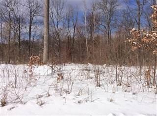Land for sale in 12440 WOLFBERRY Court, Lake Fenton, MI, 48430